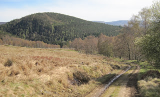 Walking back to Ballater, Deeside