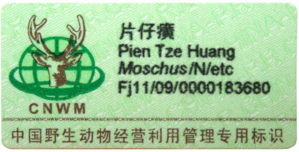 Minum Pien Tze Huang Setelah Caesar, Pengaruh Ke Asi Ngga Ya?