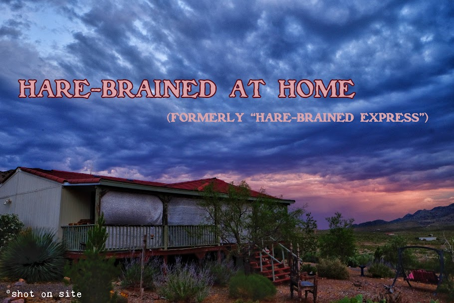 Hare-Brained at Home (formerly Hare-Brained Express Tour)