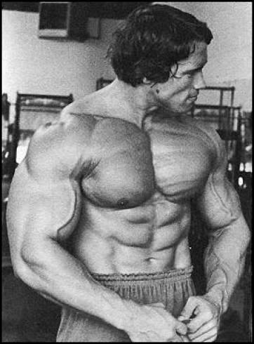 Wwe Superstars Wwe Wallpapers Wwe Wrestlemania Arnold