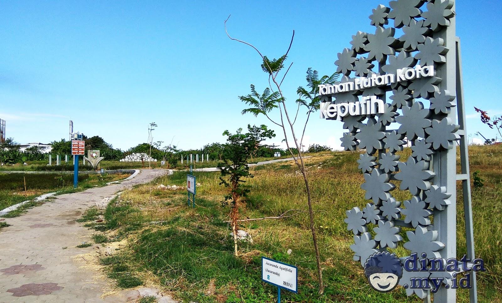 Taman Sakura Keputih Surabaya Taman Pinggiran Surabaya Timur