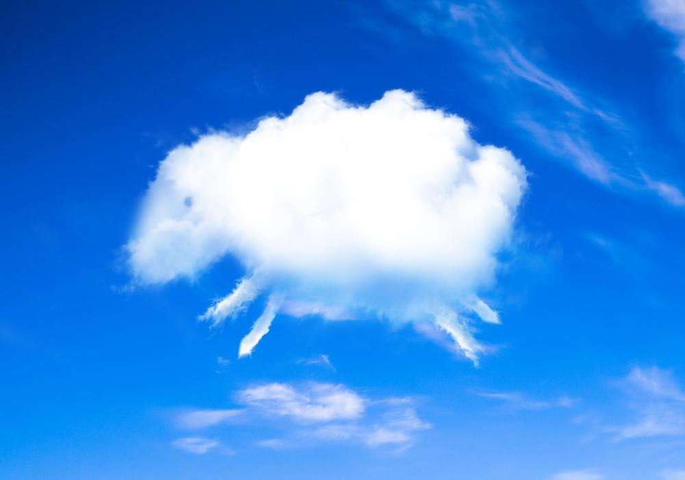 мода настолько картинки облака в виде животных сразу, керамистам