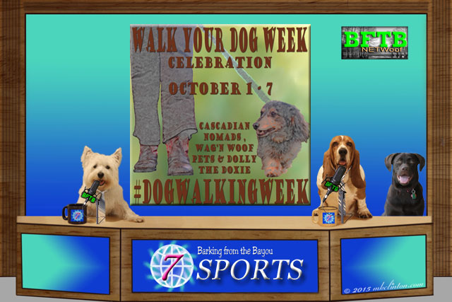 BFTB sports desks with Walk Your Dog Week story