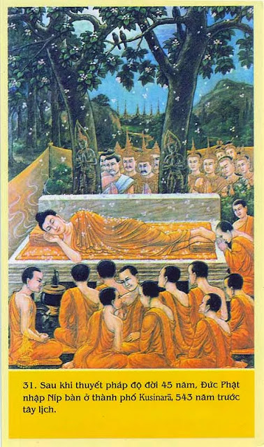 Đạo Phật Nguyên Thủy - Chuyện Kể Đạo Phật - Bước tới cái chết