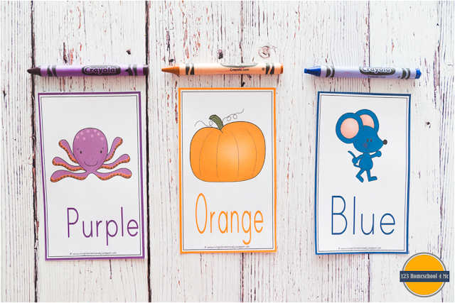 color wall cards