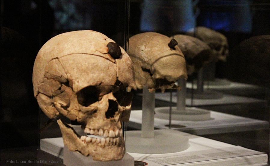 Conjunto de cabezas enclavadas procedentes de los yacimientos de Puig Castellar (Santa Coloma de Gramanet, Barcelona) y Puig de Sant Andreu (Ullastret, Girona). Foto: Laura Benito Díez - Jansá