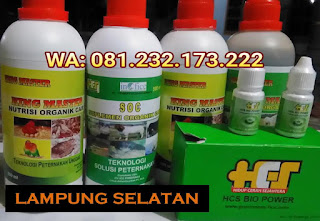 Jual SOC HCS, KINGMASTER, BIOPOWER Siap Kirim Lampung Selatan Kalianda