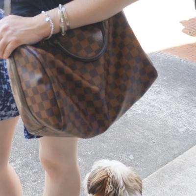 Cooper, LV speedy B bag | AwayFromTheBlue
