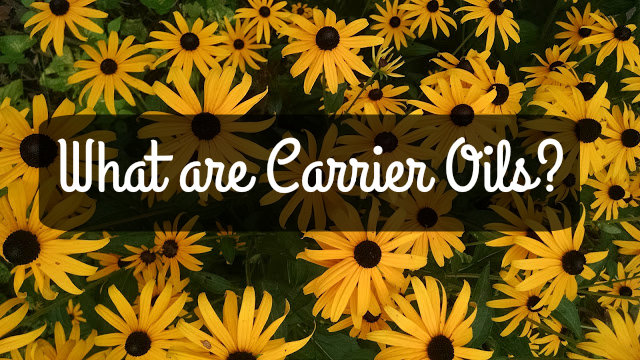 carrier oils explained