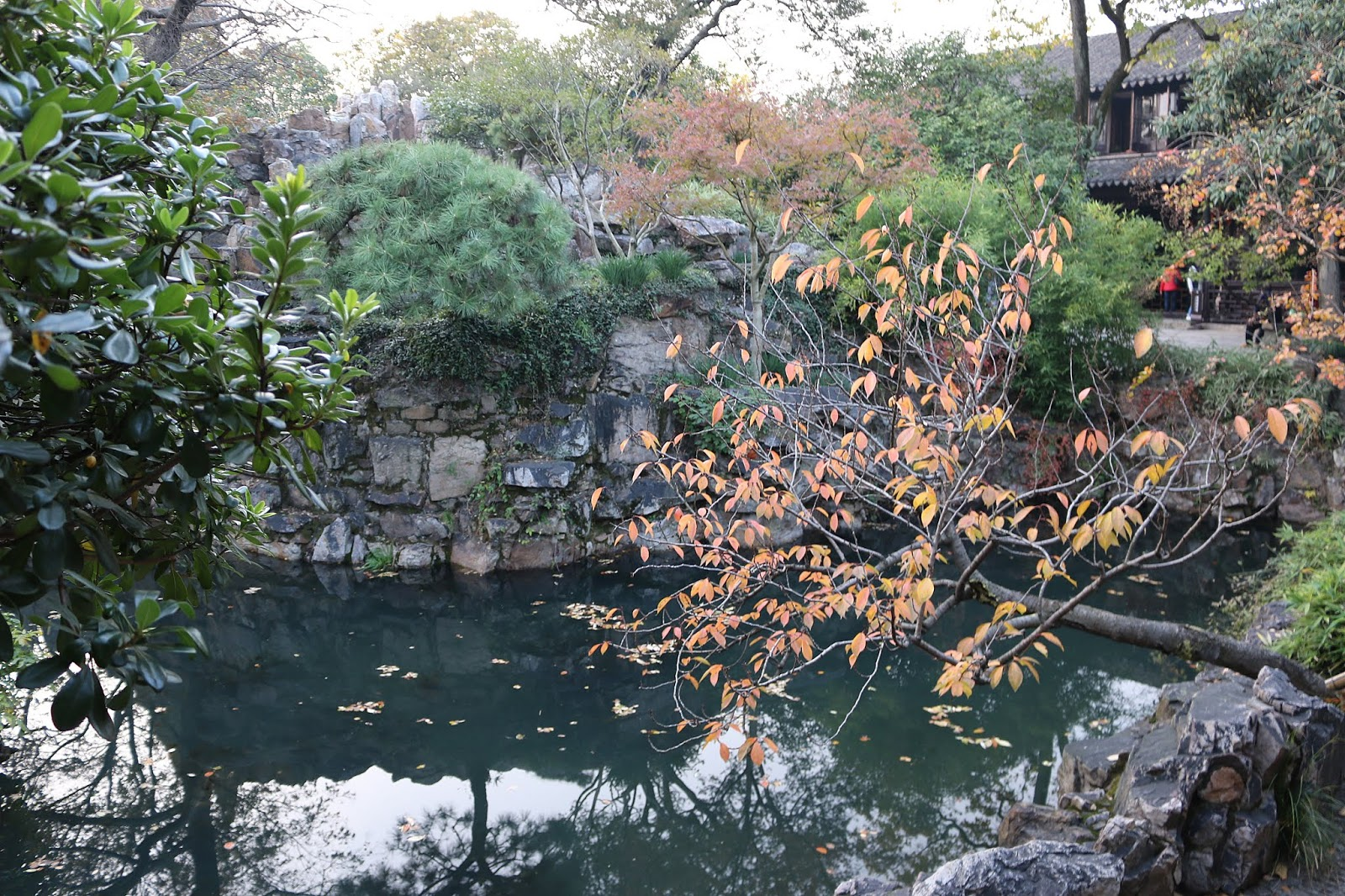 Couple's Garden (Lotus Garden) Suzhou