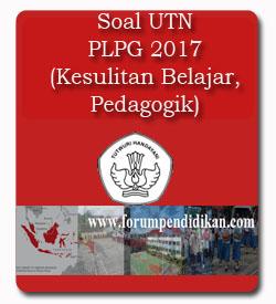 Soal UTN PLPG 2017 Materi Pedagogik, Kesulitan Belajar Siswa