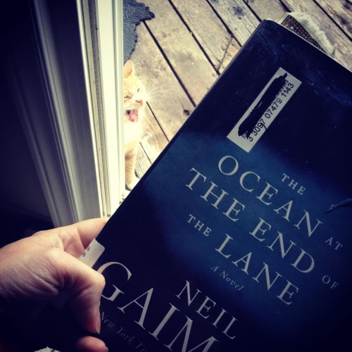 A pale hand holds a hardcover copy of The Ocean At The End of the Lane up against an open French door that gives onto a wooden deck. A ginger cat sits on the deck, his mouth open in a yawn.