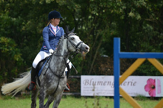 A female wearing a blue show jacket riding a dapple grey horse around a show jump at a horse show