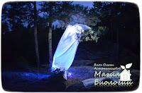 магия-биологии-ночные-наблюдения-светоловушка-энтомология