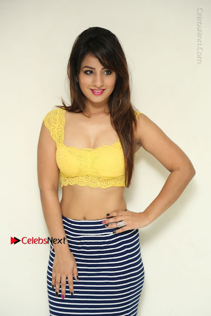 Cute Telugu Actress Shunaya Solanki High Definition Spicy Pos in Yellow Top and Skirt  0003.JPG