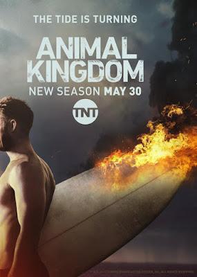 Animal Kingdom (TV Series) S01 DVD R2 PAL Spanish