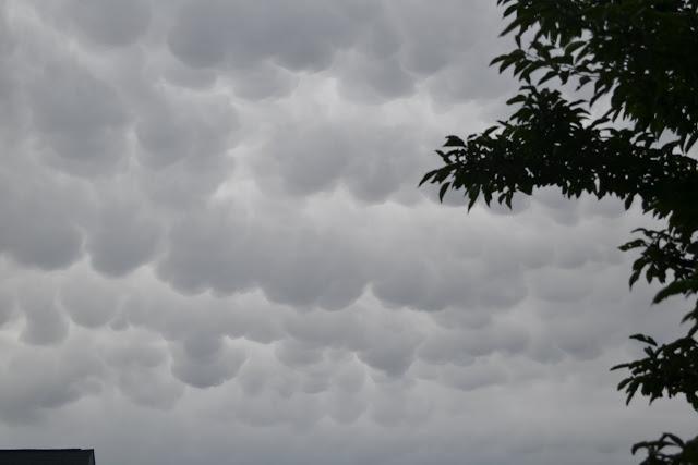 Вымяобразные(трубчатые) облака