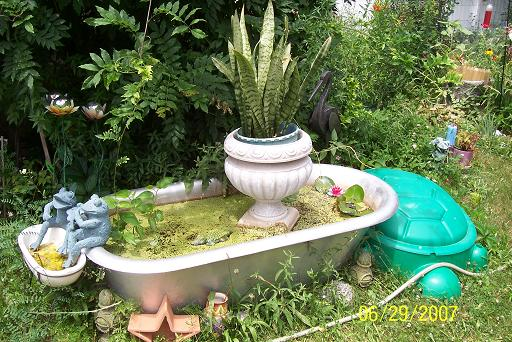 The Perfect Water Garden Building A Backyard Pond