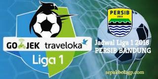 Jadwal Persib vs PS Tira Dimajukan Jadi Jumat 23 Maret, Tim Pelatih Tak Masalah