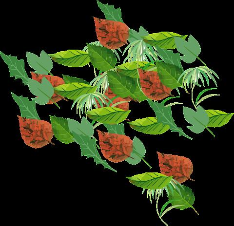New Creation of Vector art flower