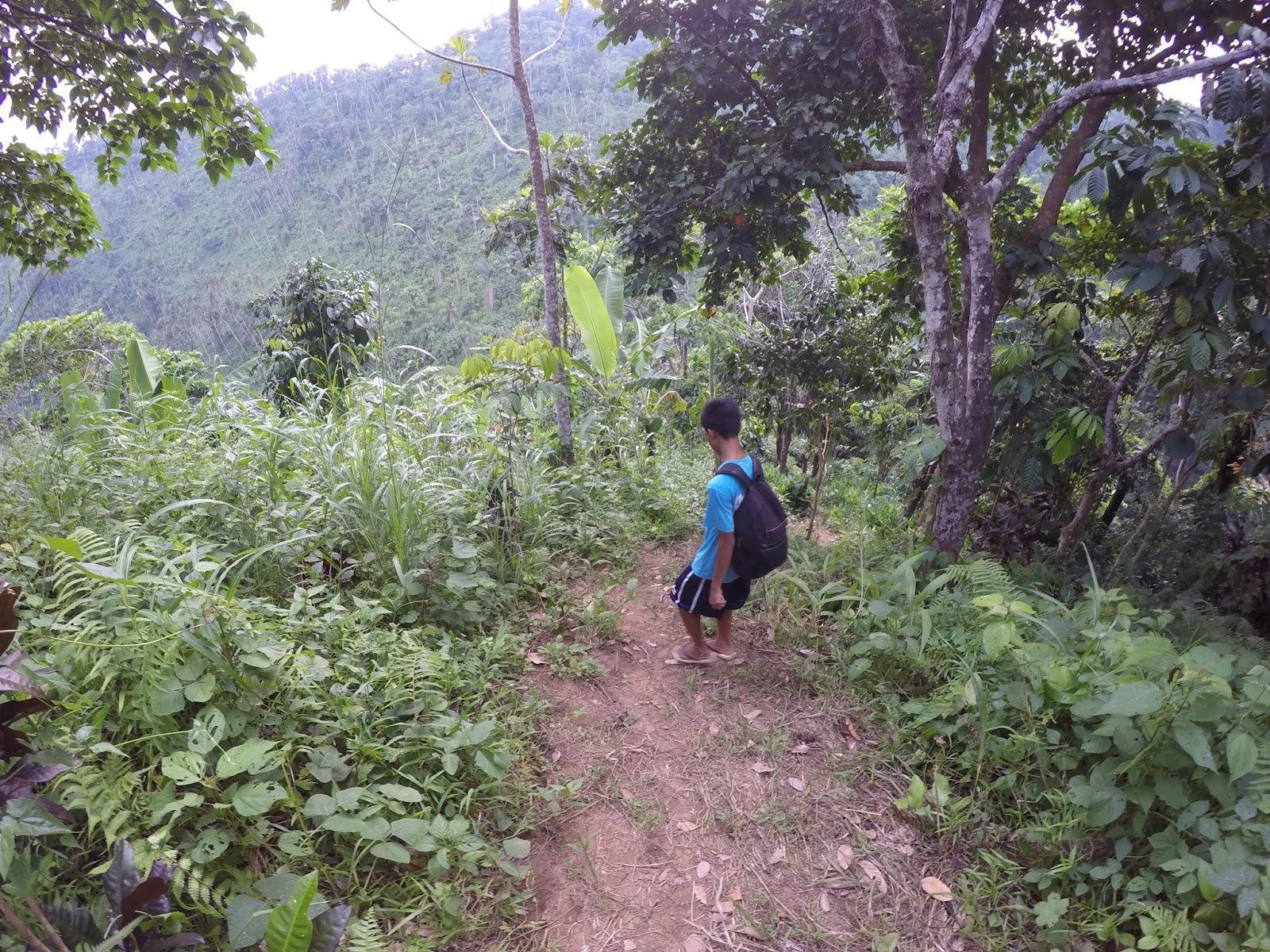 Trail in Hulugan Falls