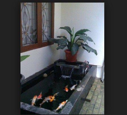 Desain Kolam Ikan Dalam Rumah Minimalis - Sekitar Rumah
