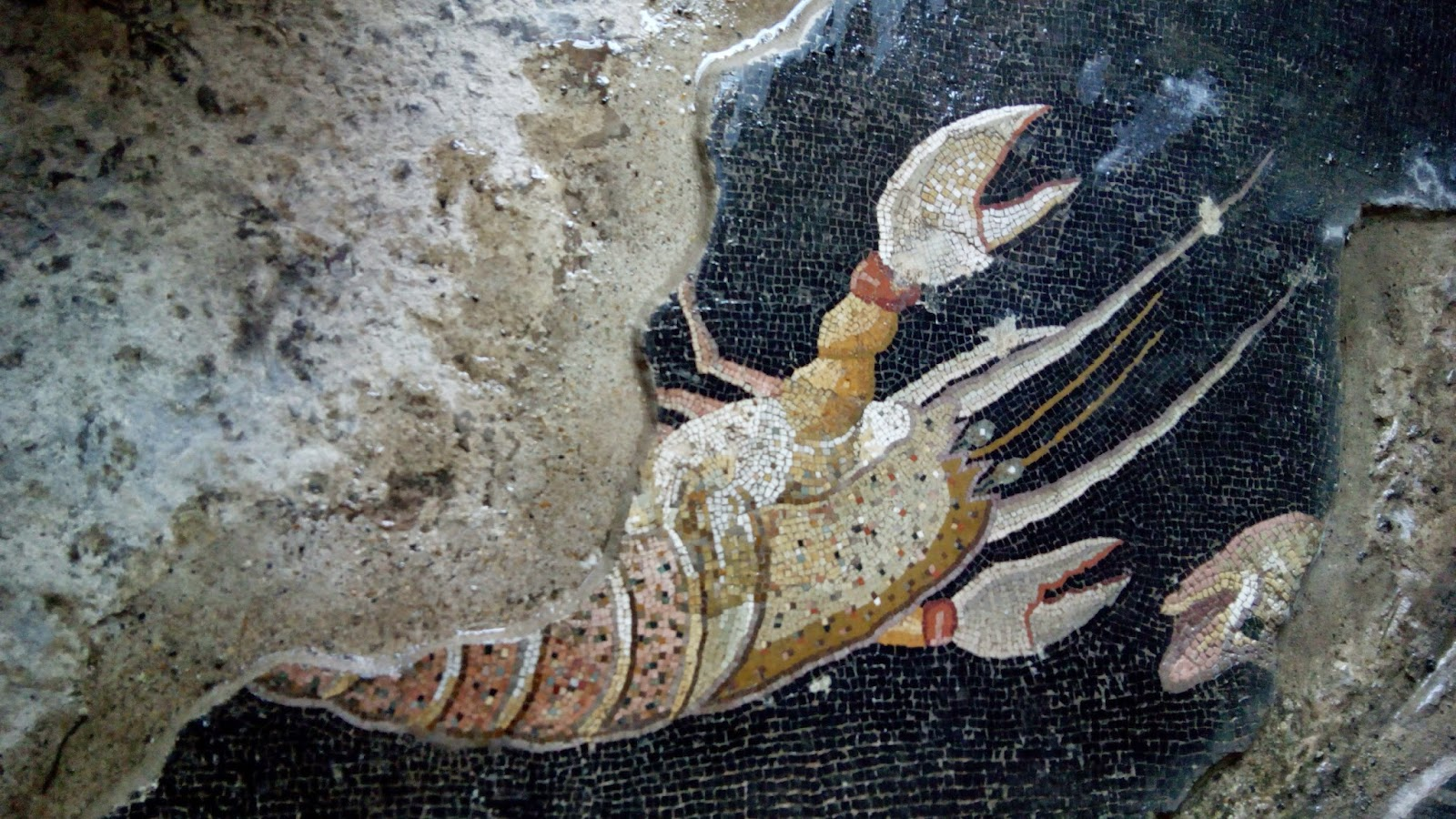 Mosaicos com desenhos de peixe e Palestrina
