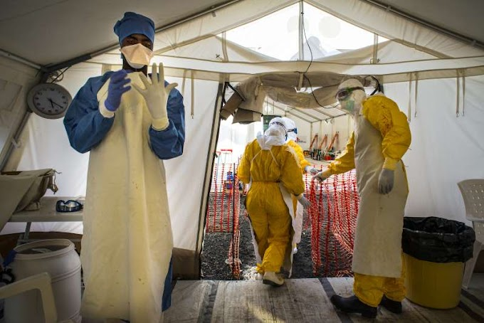 Congo announces 4 new Ebola cases in country's northeast