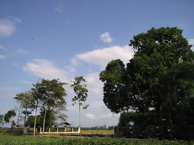Rumah Pelangi Bekasi