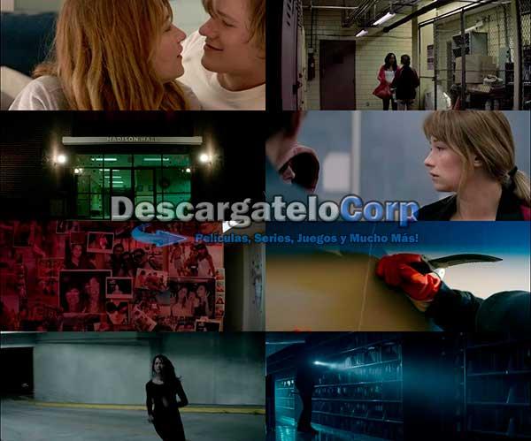 Terror En El Campus DVDRip Latino