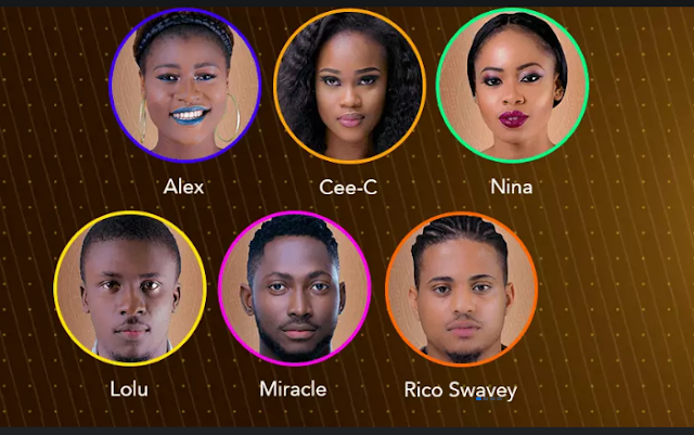 Image result for BBNaija: Miracle, Nina, Cee C, others nominated for eviction