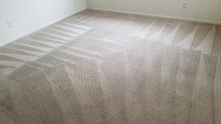 Las Vegas carpet cleaning results
