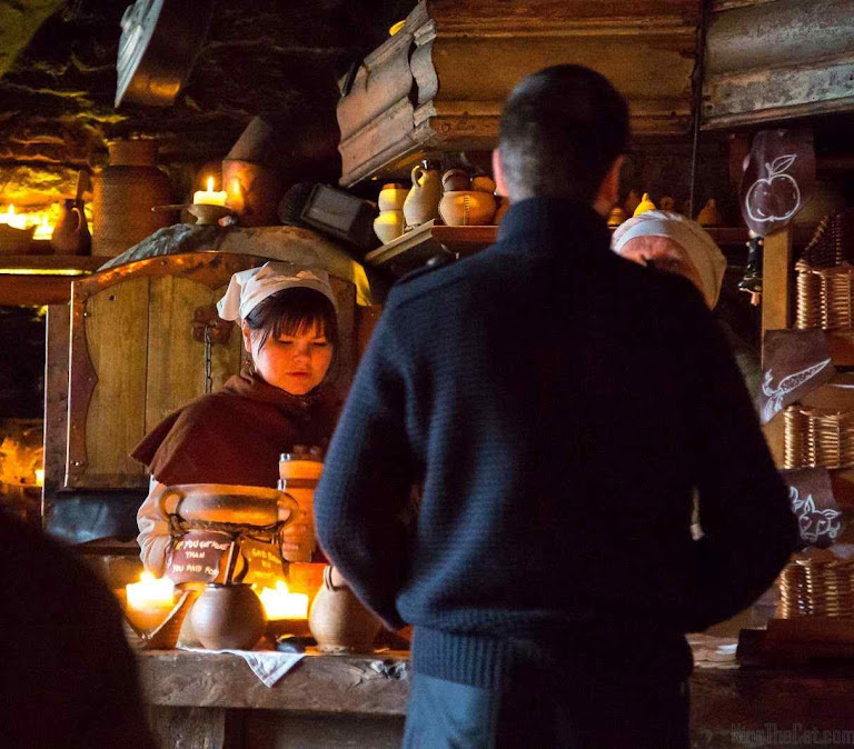 Taverna dos Três Dragões em Tallinn