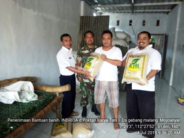 Poktan Karya Tani Desa Gebangmalang Kecamatan Mojoanyar Kabupaten Mojokerto
