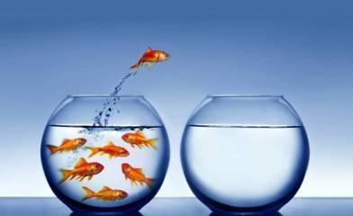 Mental pengusaha bersiap keluar dari zona nyaman