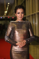 Actress Catherine Tresa in Golden Skin Tight Backless Gown at Gautam Nanda music launchi ~ Exclusive Celebrities Galleries 080.JPG