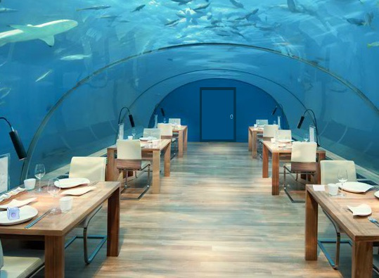 Underwater World Lounge E…