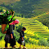 What Is Sapa's Tourism Symbol In Your Mind?