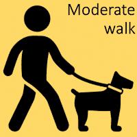 Moderate walk