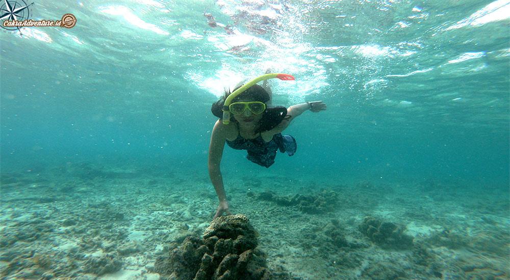 open trip dan private pulau seribu