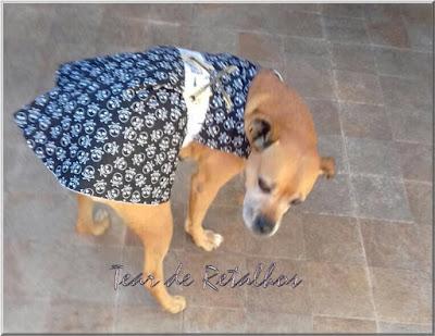 Cãozinho vestido com uma roupa PET para cachorro exclusiva. Dupla face, este lado tem um desenho com motivos de caveirinhas