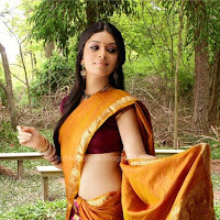 Nisha shetty hot  in saree pics