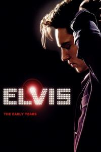 Poster Elvis