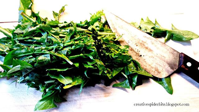 chopping dandelion leaves for dandelion pesto