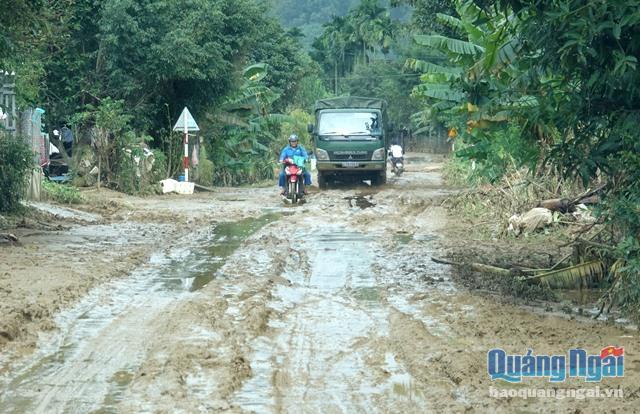 Quảng Ngãi: Lũ qua đi, làng quê xơ xác