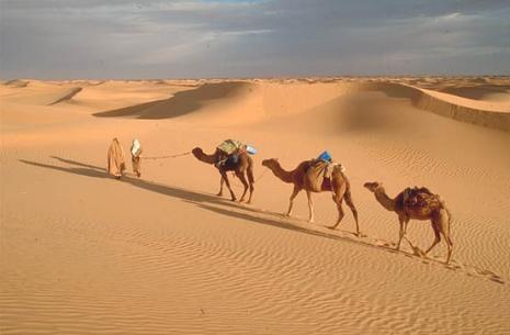 Resultado de imagem para Israel atravessa o  deserto