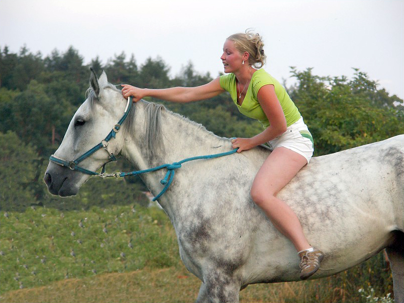 Pony girl riding escorts Meet woman to fuk in your country.