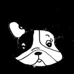 oh!my dog!  black dog tweets