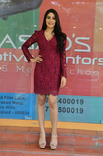 Nikki Tamboli Chikati Gadilo Chithakotudu Movie Success Meet 4