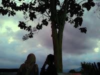 Asyiknya Berburu Sun Rise di Punthuk Setumbu